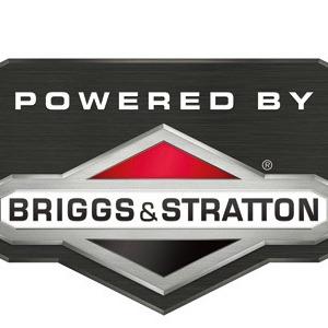 marque briggs stratton