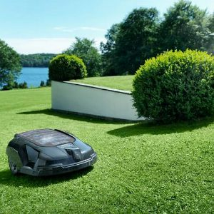 robot tondeuse dans le jardin