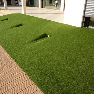 pelouse bien coupé