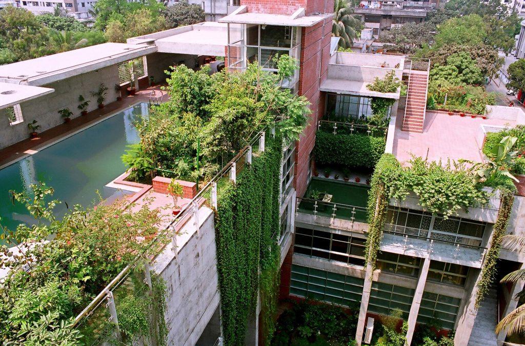 Comment entretenir un petit jardin de ville ?